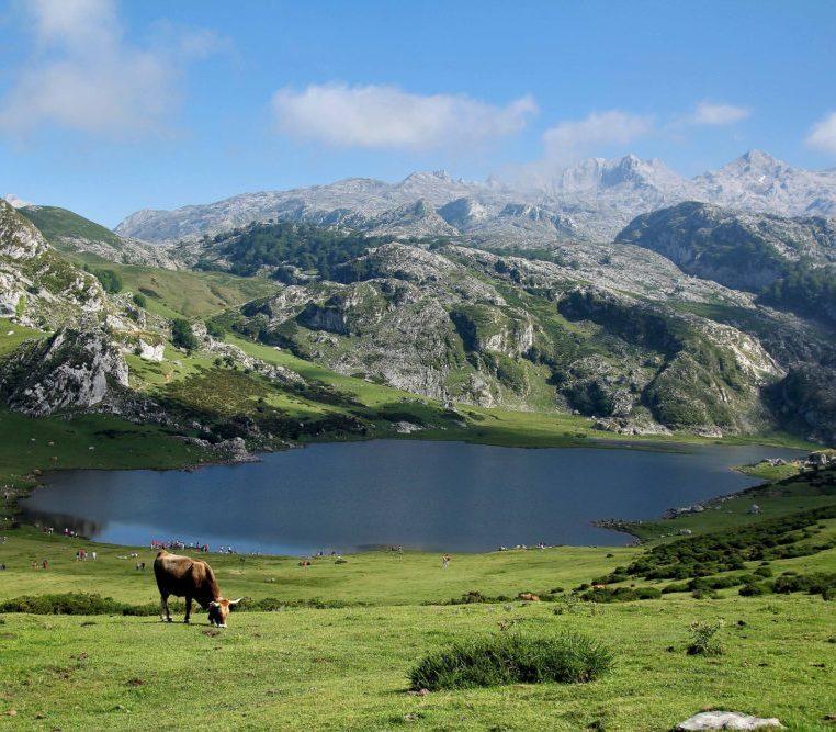 De Pyreneen
